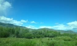 トゥバの平原